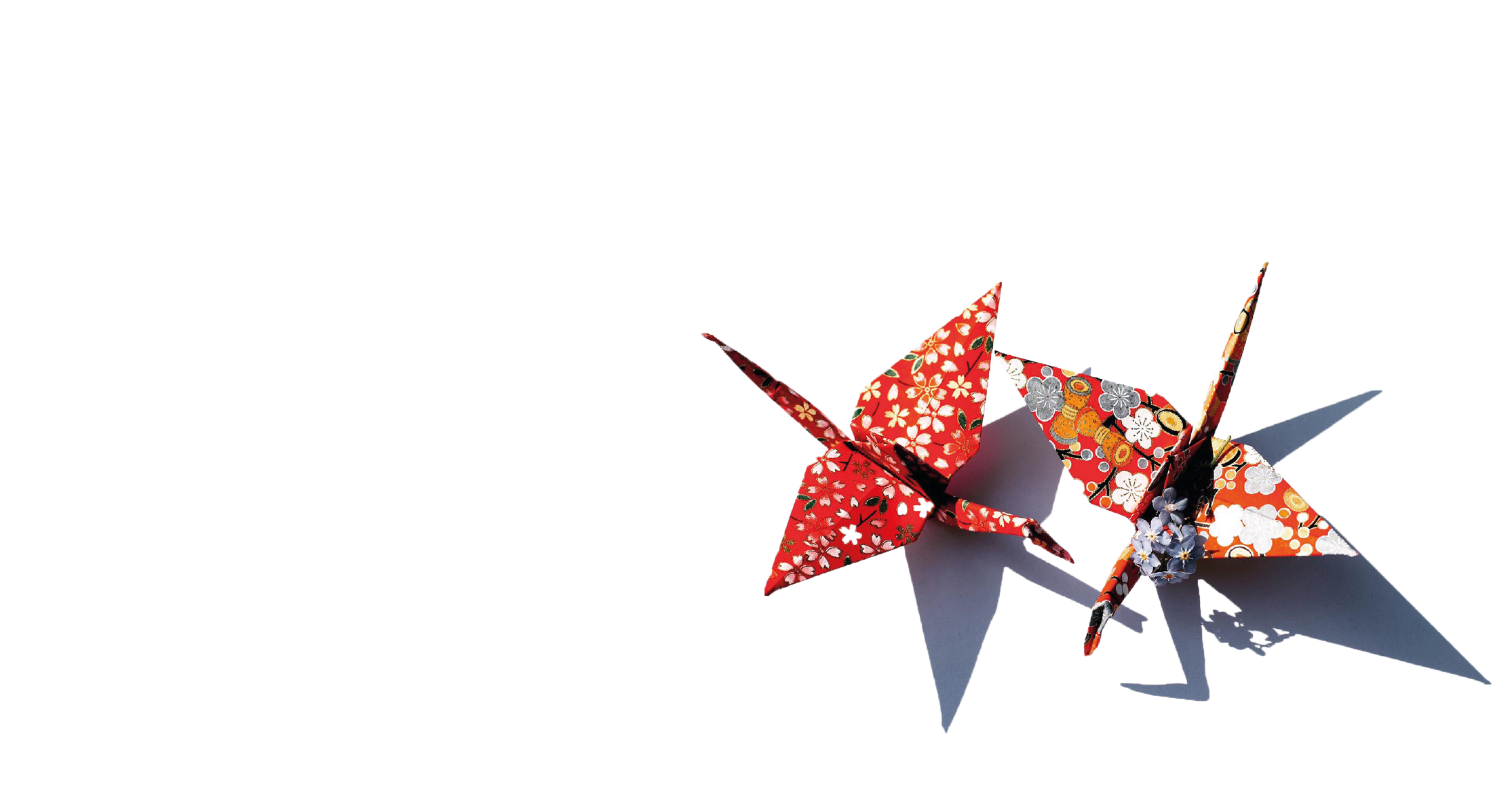 Muriel Pic